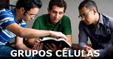 Grupo Células